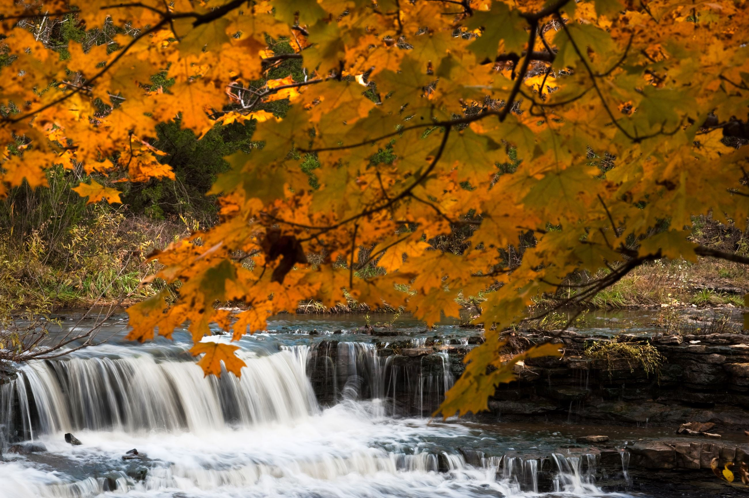 Rock Creek Waterfall and Yellow Leaves